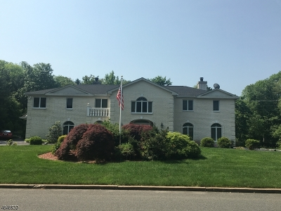 Franklin Lakes Boro Single Family Home For Sale: 672 Knollwood Rd