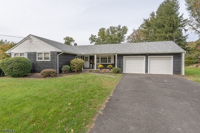 Bridgewater Twp. Single Family Home For Sale: 14 Frohlin Dr