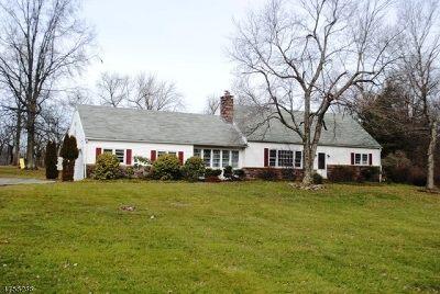 Delaware Twp. Single Family Home For Sale: 12 Dogwood Dr