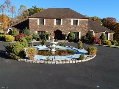 Warren Twp. Single Family Home For Sale: 3 Krausche Road