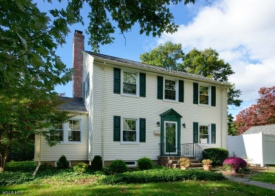 Madison Single Family Home For Sale: 2 Oak Ct
