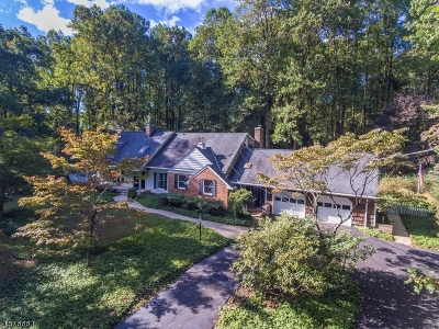 Readington Twp. Single Family Home For Sale: 5 Voorhees Rd