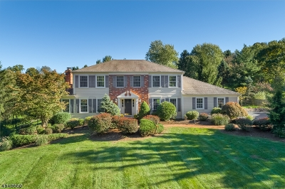 Mendham Boro, Mendham Twp. Single Family Home For Sale: 9 Coventry Rd
