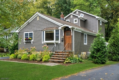 Long Hill Twp Single Family Home For Sale: 310 Passaic Ave
