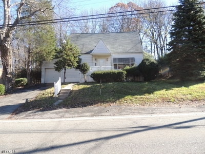 Mount Olive Twp. Single Family Home For Sale: 29 Mt Olive Rd