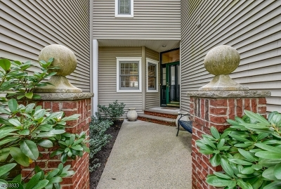 Roseland Boro Condo/Townhouse For Sale: 56 Kent Dr C0160