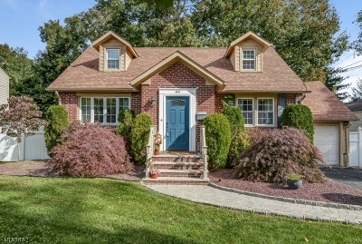 Springfield Single Family Home For Sale: 44 Sherwood Rd