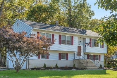 Parsippany Single Family Home For Sale: 20 Cobb Rd