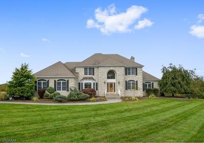 Hillsborough Twp. Single Family Home For Sale: 3 Castle Hill Ln