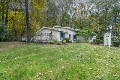Randolph Twp. Single Family Home For Sale: 60 1 Morris Tpke