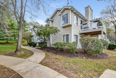 Bedminster Twp. Condo/Townhouse For Sale: 34 Sage Ct