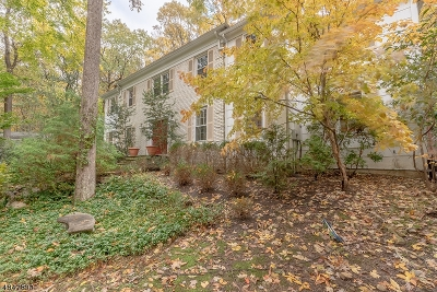 Randolph Twp. Single Family Home For Sale: 8 Quarry Ct