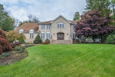 Montville Twp. Single Family Home For Sale: 18 Garrity Ter
