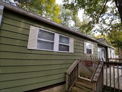 Bethlehem Twp., High Bridge Boro Single Family Home For Sale: 2 Village Sq