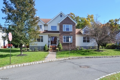 Hillsborough Twp. Single Family Home For Sale: 99 Nostrand Rd