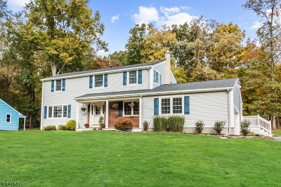 Bridgewater Twp. Single Family Home For Sale: 61 Stella Dr