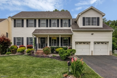Bridgewater Twp. Single Family Home For Sale: 8 Forest Ave