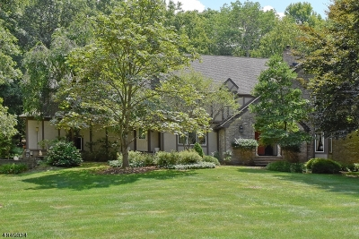 Sparta Twp. Single Family Home For Sale: 23 Andrea Ct