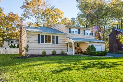 Berkeley Heights Twp. Single Family Home For Sale: 367 River Bend Rd