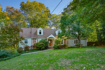 Bernardsville Boro Single Family Home For Sale: 180 Round Top Rd
