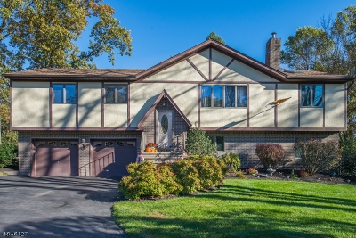 Mount Olive Twp. Single Family Home For Sale: 19 Alcrest Ave