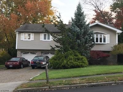 North Haledon Boro Single Family Home For Sale: 194 Dorothy Dr