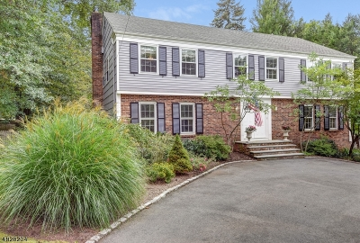 Millburn Twp. Single Family Home For Sale: 3 Edwards Pl