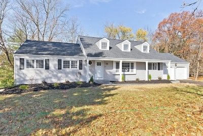 Bridgewater Twp. Single Family Home For Sale: 947 Ardsley Ln