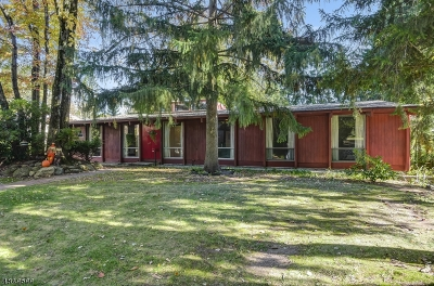 Springfield Twp. Single Family Home For Sale: 28 Fernhill Rd