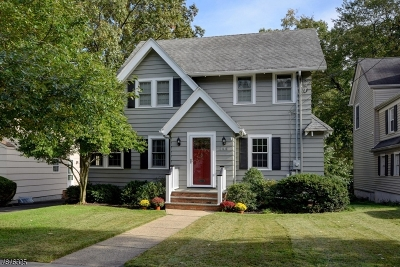 Westfield Town Single Family Home For Sale: 744 Oak Ave
