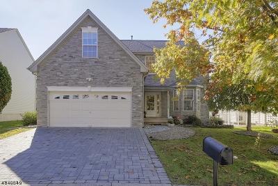 Bridgewater Twp. Single Family Home For Sale: 10 Larsen Ct