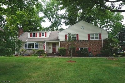 Westfield Town Single Family Home For Sale: 1035 Summit Ave
