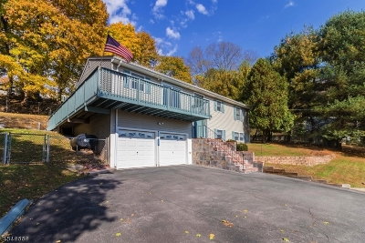 Holland Twp., Milford Boro Single Family Home For Sale: 231 Milford Mt Pleasant Rd