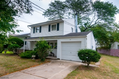 Edison Twp. Single Family Home For Sale: 14 Brian Rd