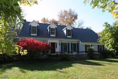 Raritan Twp. Single Family Home For Sale: 51 Grandin Drive