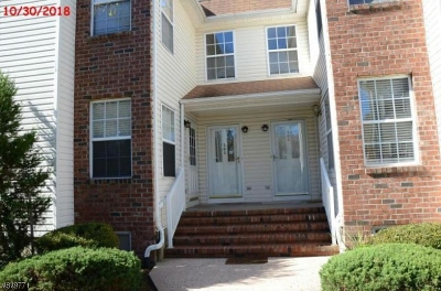 Piscataway Twp. Condo/Townhouse For Sale: 403 Ripley Ct