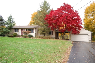Alexandria Twp. Single Family Home For Sale: 374 Mechlin Corner Rd