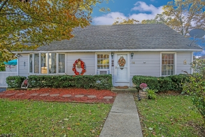 Mount Olive Twp. Single Family Home For Sale: 14 2nd St