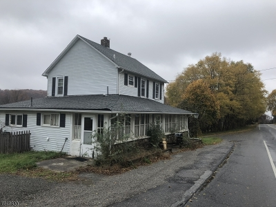 Single Family Home For Sale: 399 Route 515