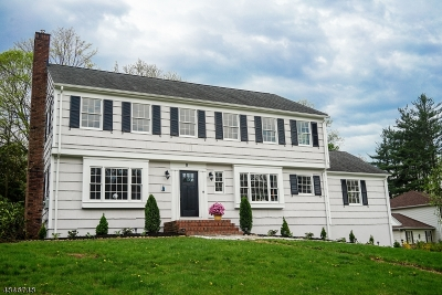 Morristown Town, Morris Twp. Single Family Home For Sale: 8 Bradwahl Dr