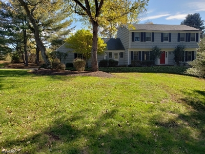 Readington Twp. Single Family Home For Sale: 19 Cardinal Dr