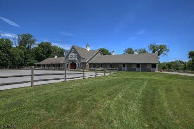 Delaware Twp. Single Family Home For Sale: 50 Dunkard Church Rd