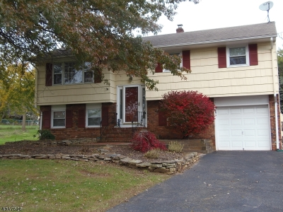 Branchburg Twp. Single Family Home For Sale: 1002 Hillcrest Dr
