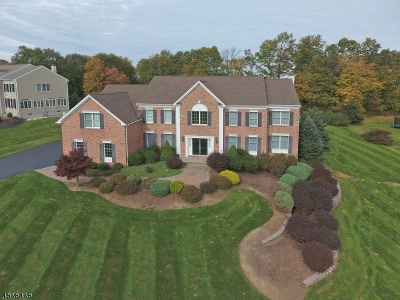 Mount Olive Twp. Single Family Home For Sale: 18 Sovereign Dr