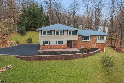 Parsippany-Troy Hills Twp. Single Family Home For Sale: 26 Manor Ln