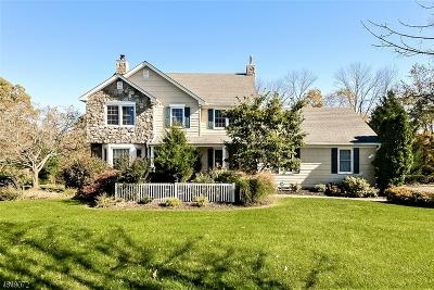 Readington Twp. Single Family Home For Sale: 1 John Reading Rd