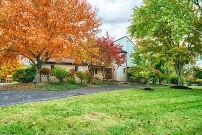 Montgomery Twp. Single Family Home For Sale: 71 Livingston Dr