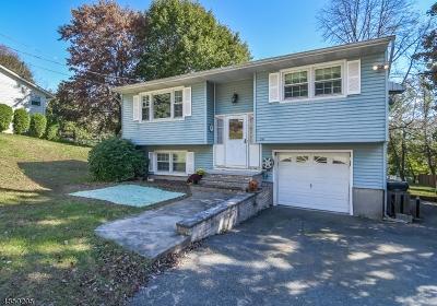 Mount Olive Twp. Single Family Home For Sale: 20 S Hillside Dr