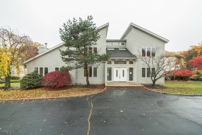 Parsippany-Troy Hills Twp. Single Family Home For Sale: 40 Meadow Bluff Rd
