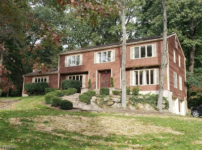 Randolph Twp. Single Family Home For Sale: 49 Longview Ave